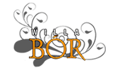 willa-bor.png