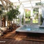 spa cameo platinum mahogany